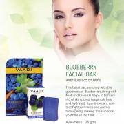 blueberry-facial-bar