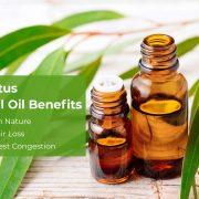 Eucalyptus Essential Oil 2