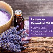 Lavender Essential Oil 2