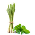 Lemongrass Extract