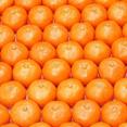 Mandarin Extract